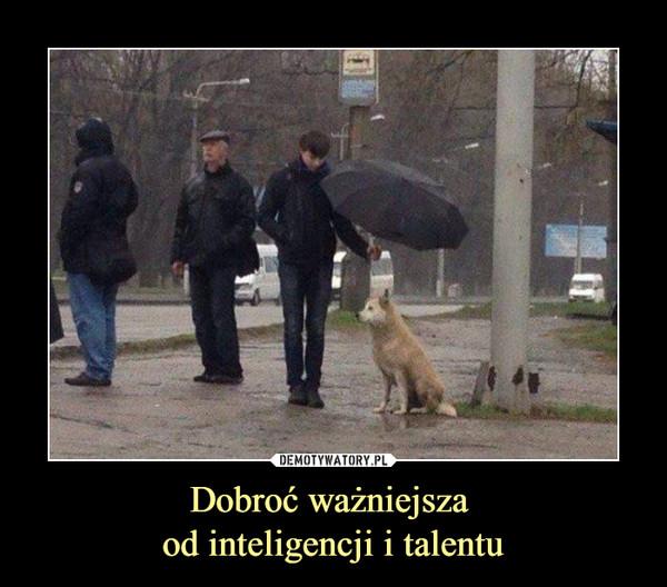 Dobroć ważniejsza od inteligencji i talentu –