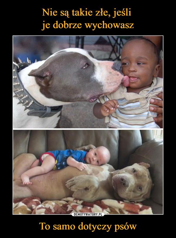 To samo dotyczy psów –