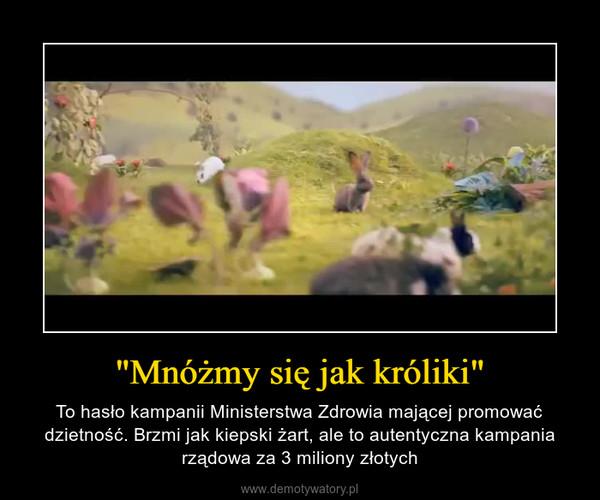 """""""Mnóżmy się jak króliki"""" – To hasło kampanii Ministerstwa Zdrowia mającej promować dzietność. Brzmi jak kiepski żart, ale to autentyczna kampania rządowa za 3 miliony złotych"""