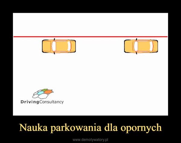 Nauka parkowania dla opornych –