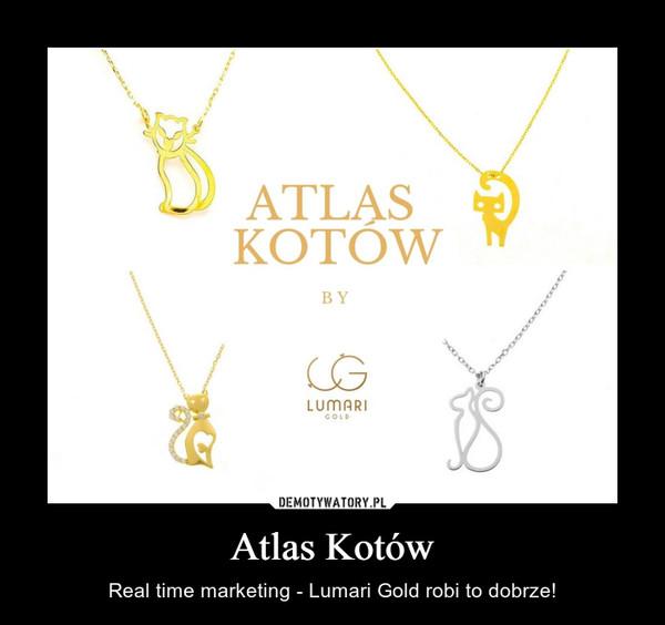 Atlas Kotów – Real time marketing - Lumari Gold robi to dobrze!