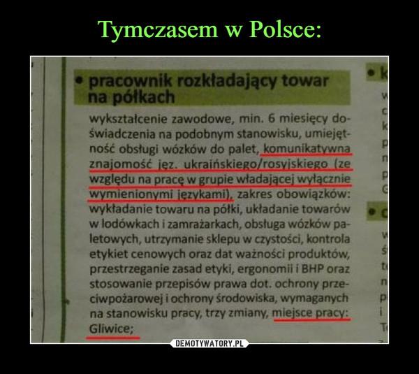 –  • pracownik rozkładający towar na półkach wykształcenie zawodowe, min. 6 miesięcy do-świadczenia na podobnym stanowisku, umiejętność obsługi wózków do palet,  komunikatywna, znajomość jęz.  ukraińskiego/rosyjskiego (ze względu na pracę w grupie włącznie  wymienionymi językami), zakres obowiązków: wykładanie towaru na półki, układanie towarów w lodówkach i zamrażarkach, obsługa wózków paletowych, utrzymanie sklepu w czystości, kontrola etykiet cenowych oraz dat ważności produktów, przestrzeganie zasad etyki, ergonomii i BHP oraz stosowanie przepisów prawa dot. ochrony przeciwpożarowej i ochrony środowiska, wymaganych na stanowisku pracy, trzy zmiany, miejsce pracy:  Gliwice;