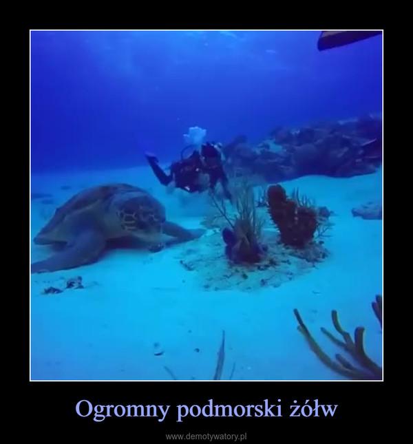 Ogromny podmorski żółw –
