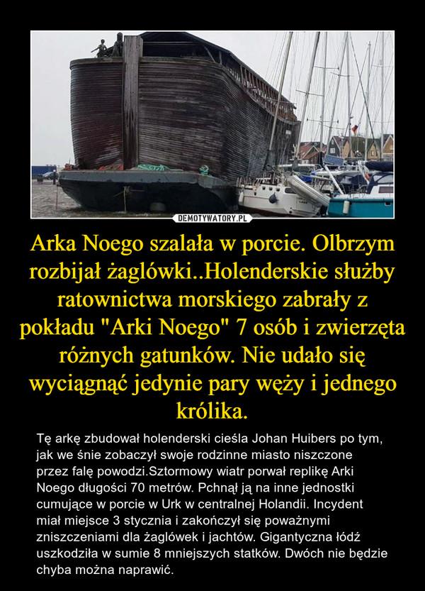 """Arka Noego szalała w porcie. Olbrzym rozbijał żaglówki..Holenderskie służby ratownictwa morskiego zabrały z pokładu """"Arki Noego"""" 7 osób i zwierzęta różnych gatunków. Nie udało się wyciągnąć jedynie pary węży i jednego królika. – Tę arkę zbudował holenderski cieśla Johan Huibers po tym, jak we śnie zobaczył swoje rodzinne miasto niszczone przez falę powodzi.Sztormowy wiatr porwał replikę Arki Noego długości 70 metrów. Pchnął ją na inne jednostki cumujące w porcie w Urk w centralnej Holandii. Incydent miał miejsce 3 stycznia i zakończył się poważnymi zniszczeniami dla żaglówek i jachtów. Gigantyczna łódź uszkodziła w sumie 8 mniejszych statków. Dwóch nie będzie chyba można naprawić."""