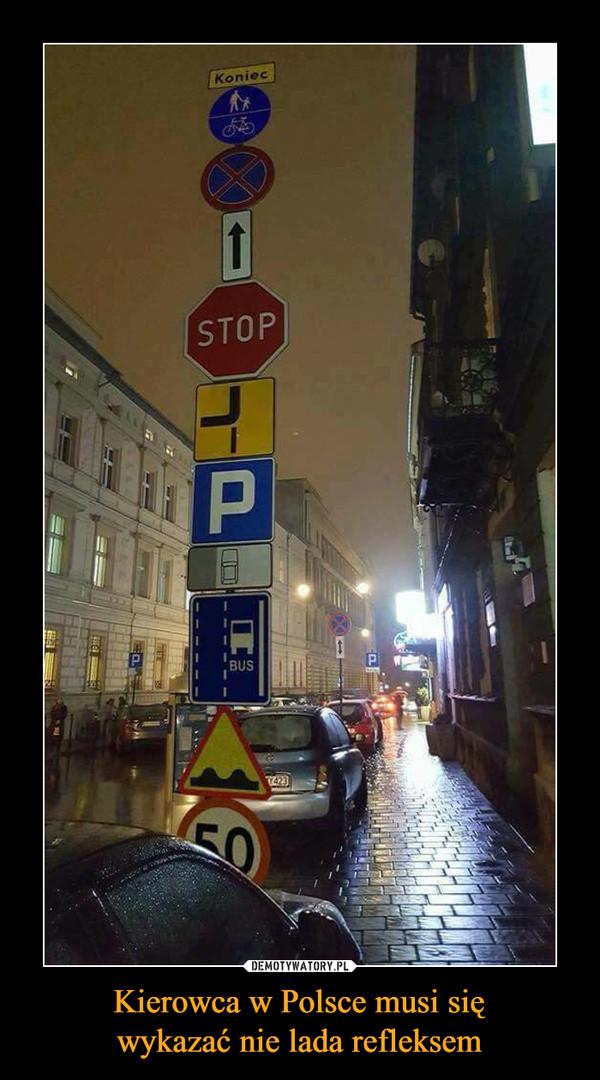 Kierowca w Polsce musi sięwykazać nie lada refleksem –