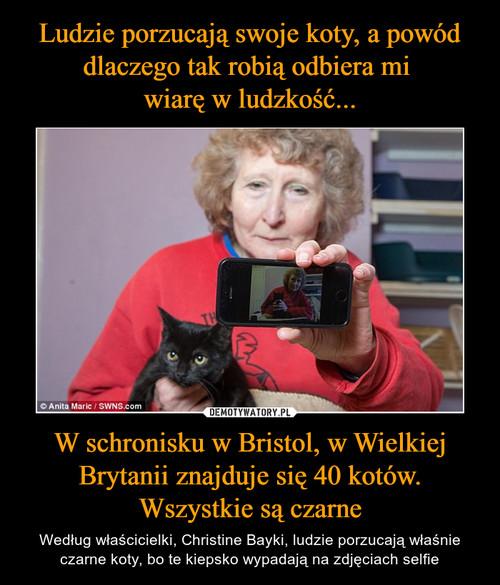 Ludzie porzucają swoje koty, a powód dlaczego tak robią odbiera mi  wiarę w ludzkość... W schronisku w Bristol, w Wielkiej Brytanii znajduje się 40 kotów. Wszystkie są czarne