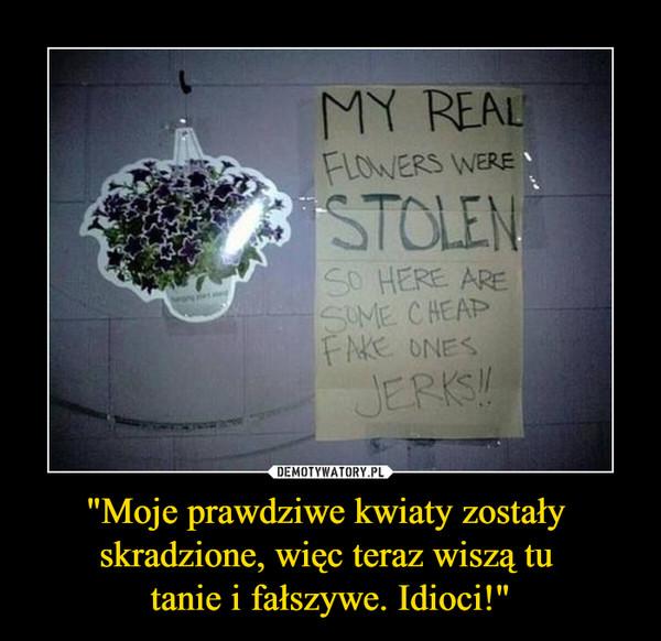 """""""Moje prawdziwe kwiaty zostały skradzione, więc teraz wiszą tu tanie i fałszywe. Idioci!"""" –  My real flowers were stolen so here are some cheap fake ones jerks"""