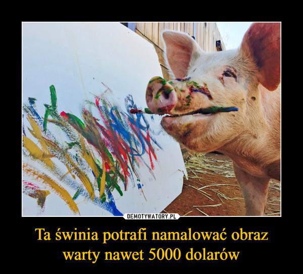 Ta świnia potrafi namalować obrazwarty nawet 5000 dolarów –