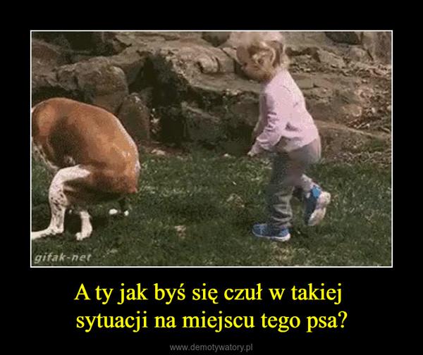 A ty jak byś się czuł w takiej sytuacji na miejscu tego psa? –
