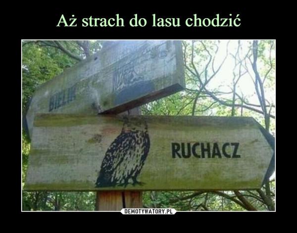 –  BIELIK RUCHACZ