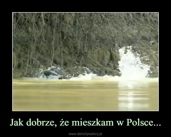 Jak dobrze, że mieszkam w Polsce... –