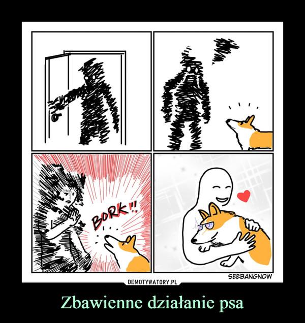 Zbawienne działanie psa –