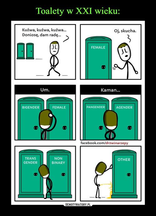 Toalety w XXI wieku: