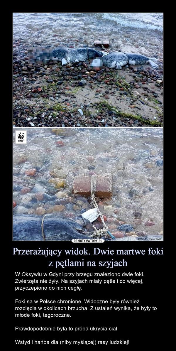 Przerażający widok. Dwie martwe fokiz pętlami na szyjach – W Oksywiu w Gdyni przy brzegu znaleziono dwie foki. Zwierzęta nie żyły. Na szyjach miały pętle i co więcej, przyczepiono do nich cegłę.Foki są w Polsce chronione. Widoczne były również rozcięcia w okolicach brzucha. Z ustaleń wynika, że były to młode foki, tegoroczne.Prawdopodobnie była to próba ukrycia ciałWstyd i hańba dla (niby myślącej) rasy ludzkiej!