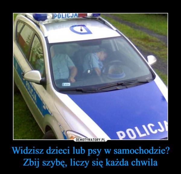 Widzisz dzieci lub psy w samochodzie? Zbij szybę, liczy się każda chwila –