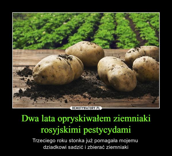 Dwa lata opryskiwałem ziemniaki rosyjskimi pestycydami – Trzeciego roku stonka już pomagała mojemu dziadkowi sadzić i zbierać ziemniaki
