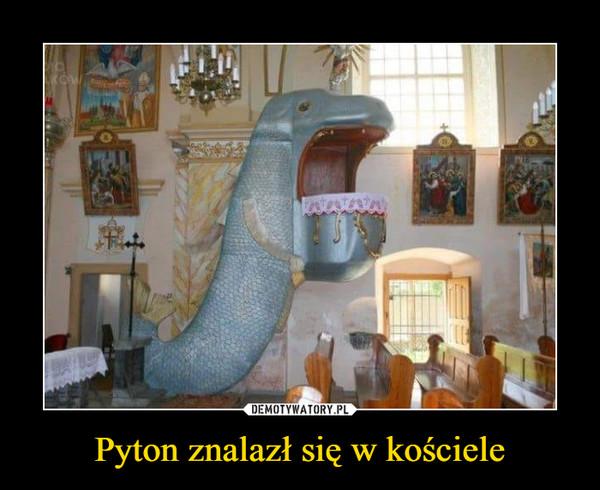 Pyton znalazł się w kościele –