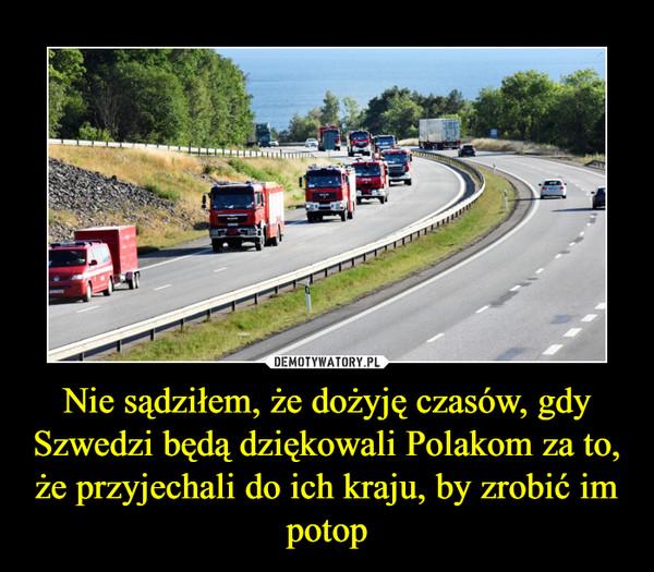 Nie sądziłem, że dożyję czasów, gdy Szwedzi będą dziękowali Polakom za to, że przyjechali do ich kraju, by zrobić im potop –
