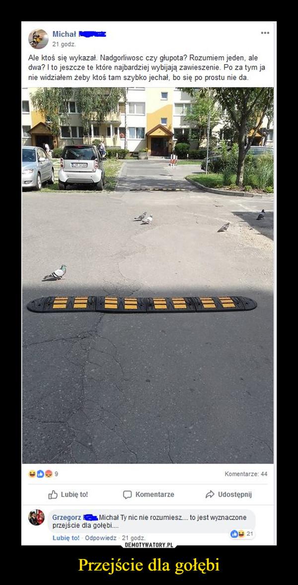 Przejście dla gołębi –