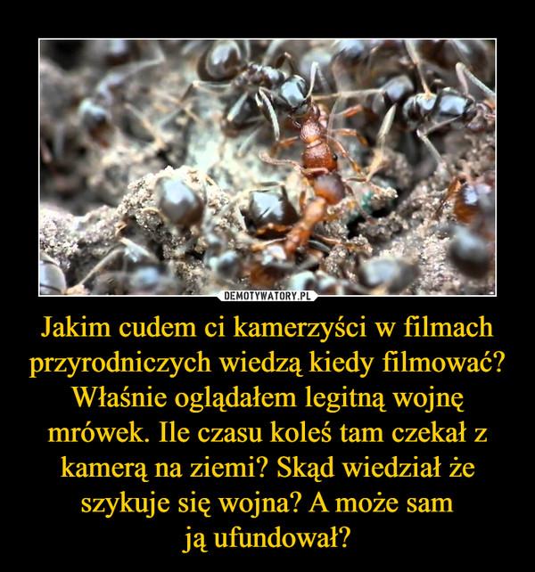 Jakim cudem ci kamerzyści w filmach przyrodniczych wiedzą kiedy filmować? Właśnie oglądałem legitną wojnę mrówek. Ile czasu koleś tam czekał z kamerą na ziemi? Skąd wiedział że szykuje się wojna? A może samją ufundował? –