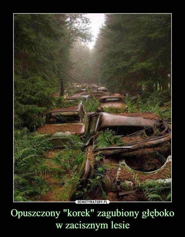 """Opuszczony """"korek"""" zagubiony głęboko w zacisznym lesie –"""