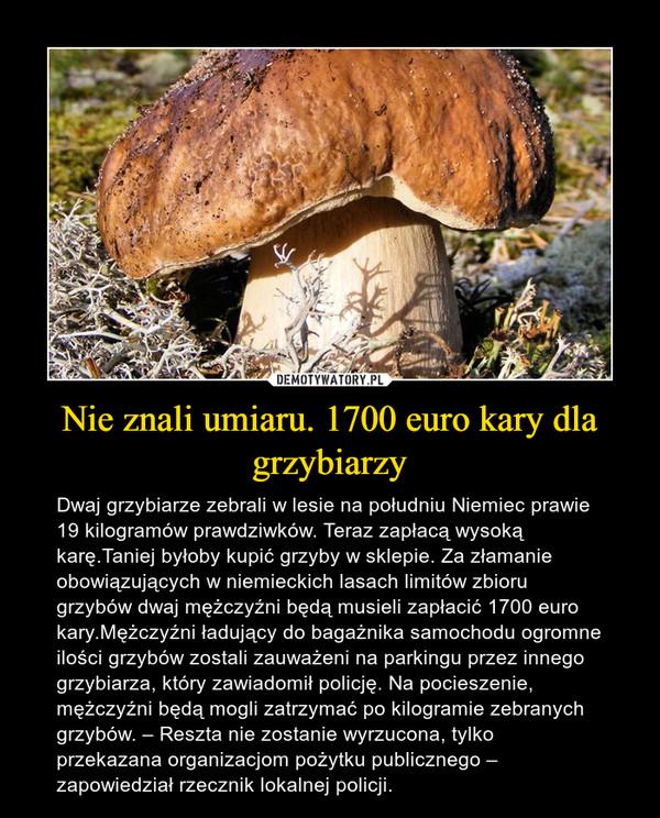 Nie znali umiaru. 1700 euro kary dla grzybiarzy – Dwaj grzybiarze zebrali w lesie na południu Niemiec prawie 19 kilogramów prawdziwków. Teraz zapłacą wysoką karę.Taniej byłoby kupić grzyby w sklepie. Za złamanie obowiązujących w niemieckich lasach limitów zbioru grzybów dwaj mężczyźni będą musieli zapłacić 1700 euro kary.Mężczyźni ładujący do bagażnika samochodu ogromne ilości grzybów zostali zauważeni na parkingu przez innego grzybiarza, który zawiadomił policję. Na pocieszenie, mężczyźni będą mogli zatrzymać po kilogramie zebranych grzybów. – Reszta nie zostanie wyrzucona, tylko przekazana organizacjom pożytku publicznego – zapowiedział rzecznik lokalnej policji.