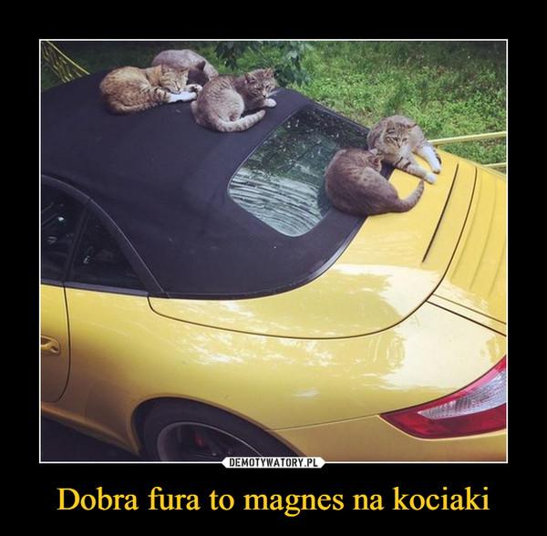 Dobra fura to magnes na kociaki –