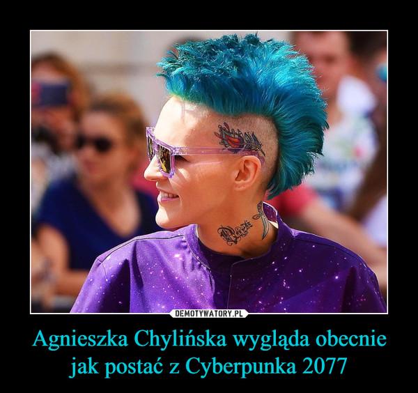Agnieszka Chylińska Wygląda Obecnie Jak Postać Z Cyberpunka
