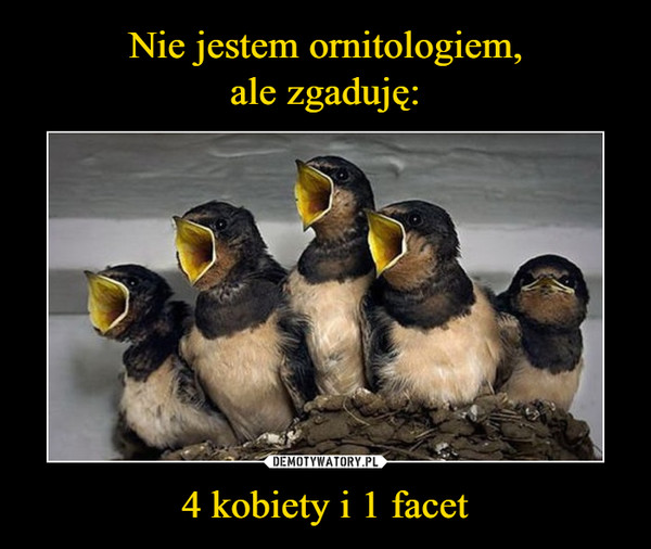 4 kobiety i 1 facet –