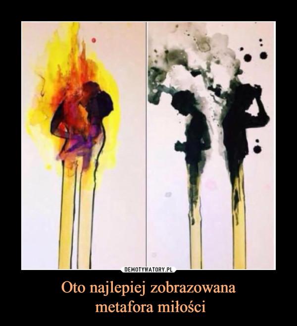 Oto najlepiej zobrazowana metafora miłości –