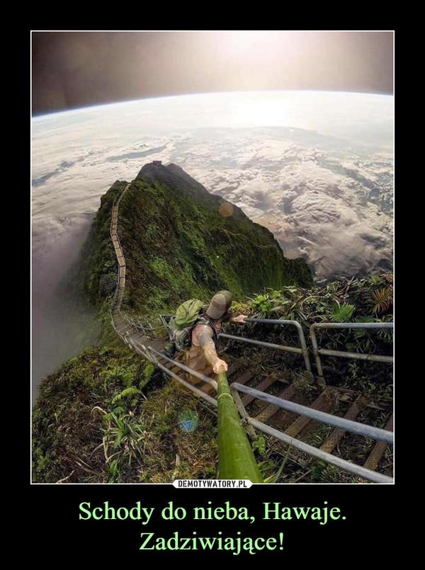 Schody do nieba, Hawaje. Zadziwiające! –