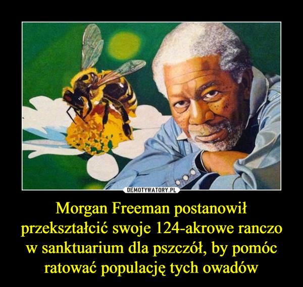 Morgan Freeman postanowił przekształcić swoje 124-akrowe ranczo w sanktuarium dla pszczół, by pomóc ratować populację tych owadów –