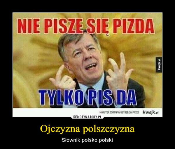 Ojczyzna polszczyzna – Słownik polsko polski