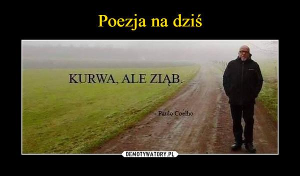 –  KURWA, ALE ZIĄB- Paulo Coelho