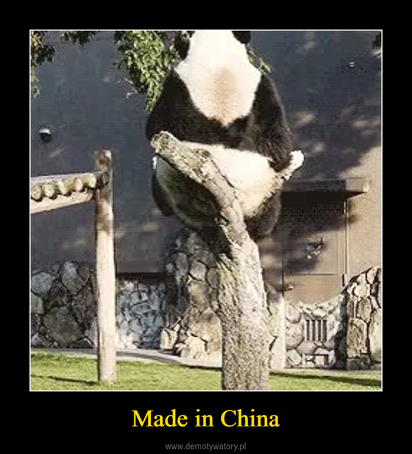 Made in China –
