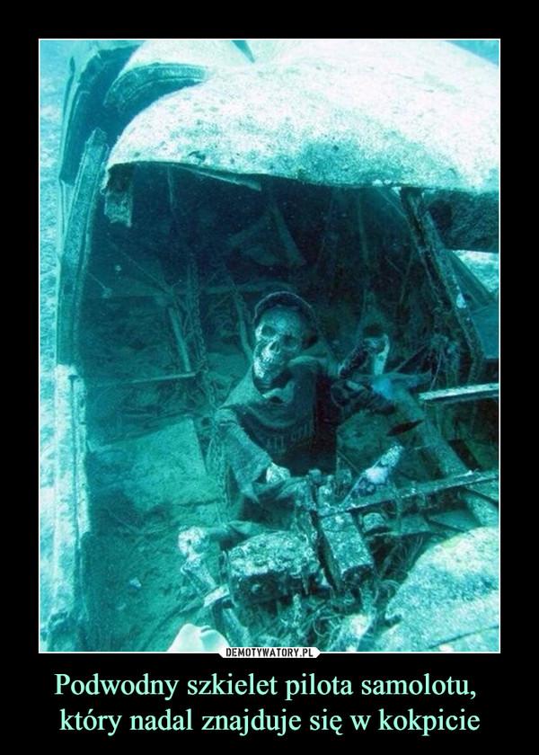 Podwodny szkielet pilota samolotu, który nadal znajduje się w kokpicie –