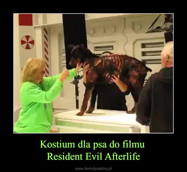 Kostium dla psa do filmu Resident Evil Afterlife –