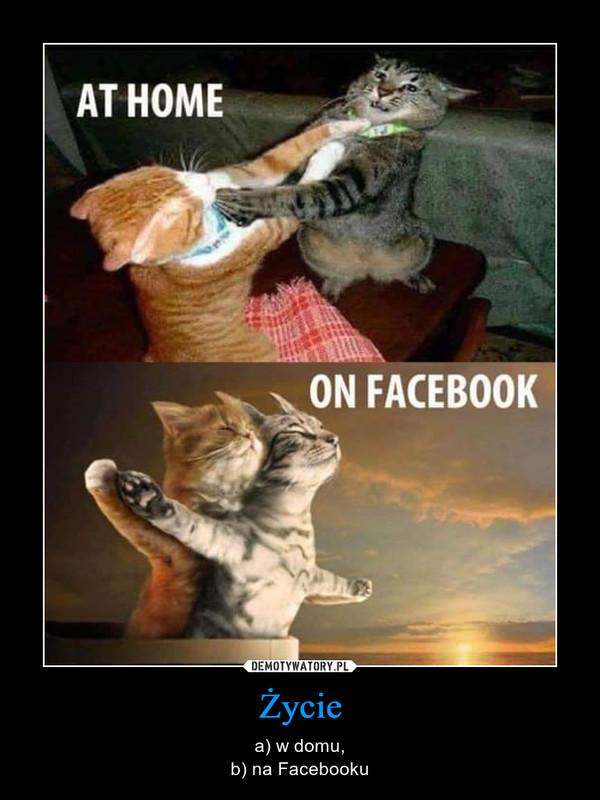 Życie – a) w domu,b) na Facebooku At home on facebook