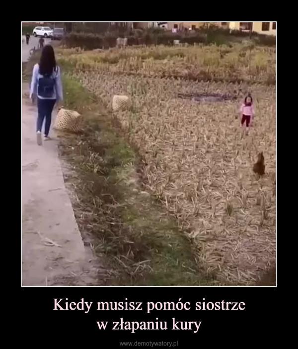 Kiedy musisz pomóc siostrzew złapaniu kury –