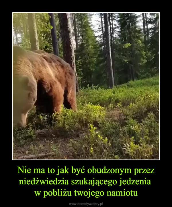 Nie ma to jak być obudzonym przez niedźwiedzia szukającego jedzenia w pobliżu twojego namiotu –