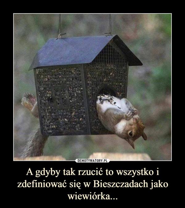 A gdyby tak rzucić to wszystko i zdefiniować się w Bieszczadach jako wiewiórka... –