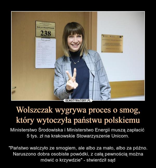 """Wolszczak wygrywa proces o smog, który wytoczyła państwu polskiemu – Ministerstwo Środowiska i Ministerstwo Energii muszą zapłacić 5 tys. zł na krakowskie Stowarzyszenie Unicorn.""""Państwo walczyło ze smogiem, ale albo za mało, albo za późno. Naruszono dobra osobiste powódki, z całą pewnością można mówić o krzywdzie"""" - stwierdził sąd"""