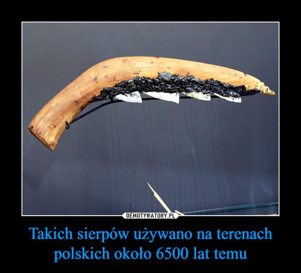 Takich sierpów używano na terenach polskich około 6500 lat temu –