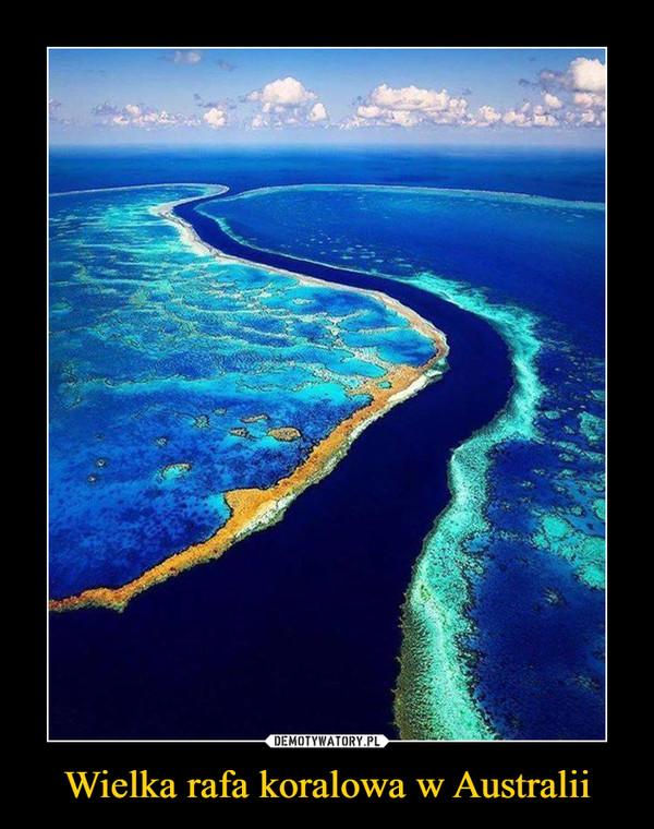 Wielka rafa koralowa w Australii –
