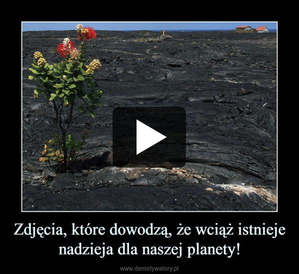 Zdjęcia, które dowodzą, że wciąż istnieje nadzieja dla naszej planety! –