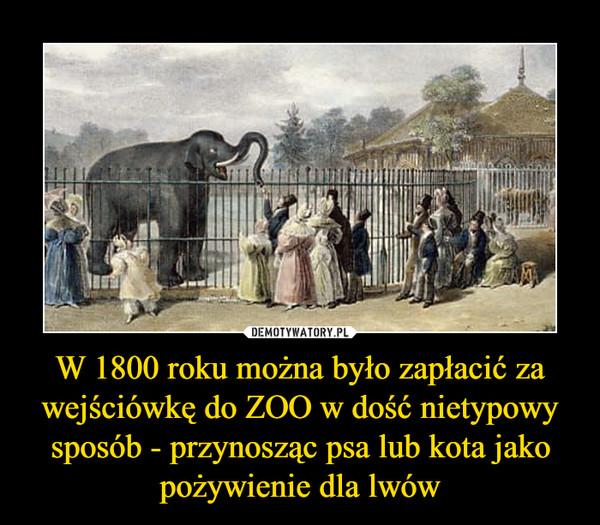 W 1800 roku można było zapłacić za wejściówkę do ZOO w dość nietypowy sposób - przynosząc psa lub kota jako pożywienie dla lwów –