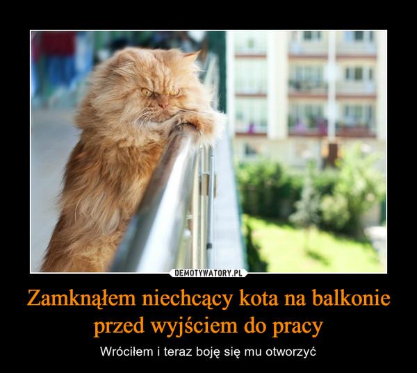 Zamknąłem niechcący kota na balkonie przed wyjściem do pracy – Wróciłem i teraz boję się mu otworzyć