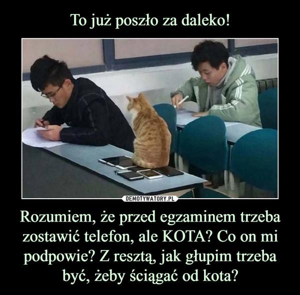 Rozumiem, że przed egzaminem trzeba zostawić telefon, ale KOTA? Co on mi podpowie? Z resztą, jak głupim trzeba być, żeby ściągać od kota? –