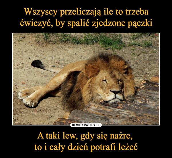 A taki lew, gdy się nażre, to i cały dzień potrafi leżeć –