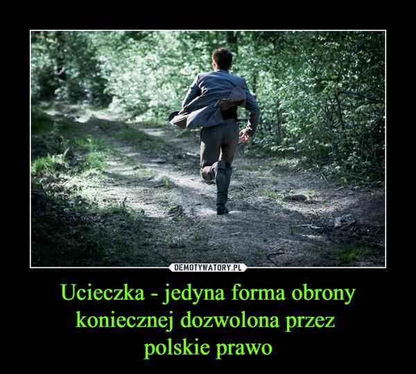 Ucieczka - jedyna forma obrony koniecznej dozwolona przez polskie prawo –